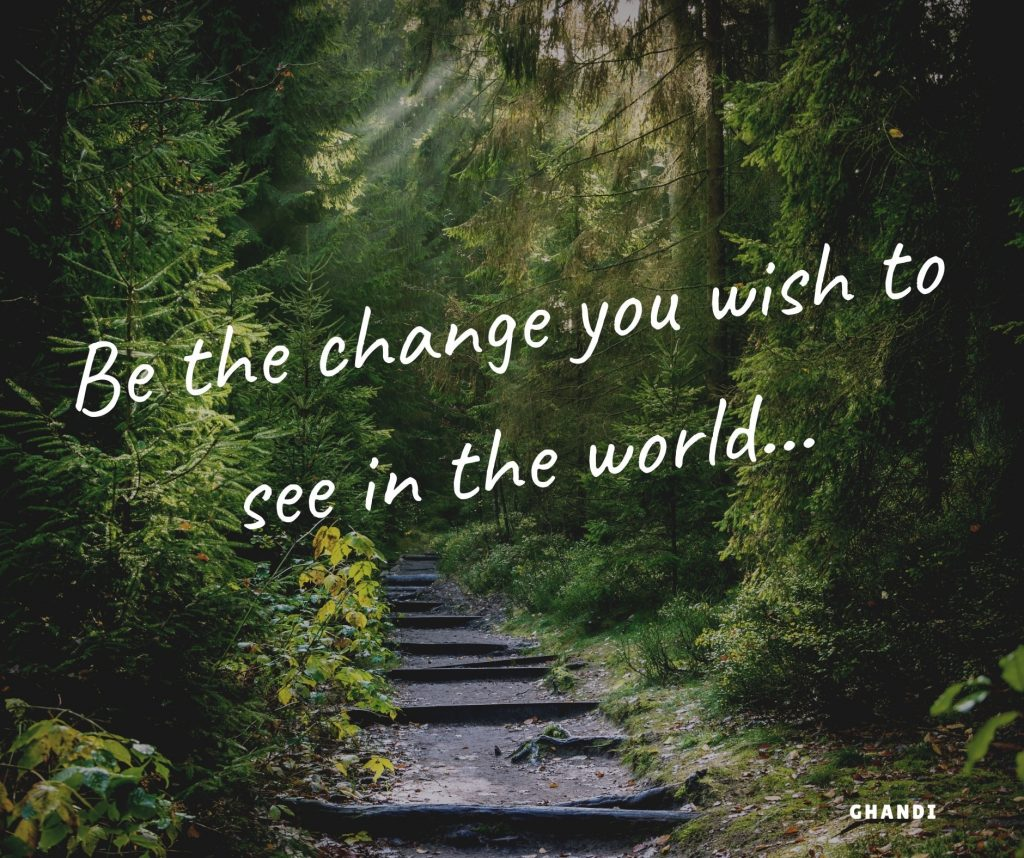 be the change - pathway through the forest